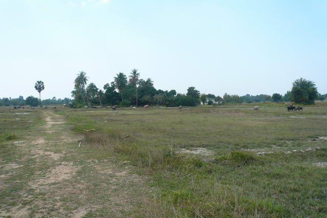 Land for sale in Na Jomtien ideal for construction