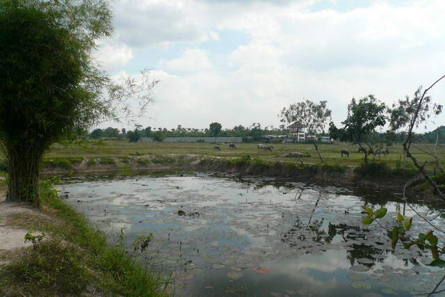 Land for sale in Na Jomtien ideal for villa project