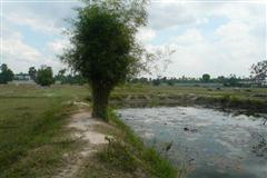 Land for sale in Na Jomtien ideal for house development
