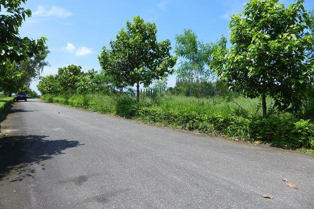 Land for sale in Pattaya showing the road access