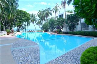 Condominium for sale Naklua Pattaya - Condominium - Wong Amat Beach - Wong Amat Beach