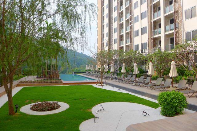 Condominium for sale Pattaya showing the communal pool and garden