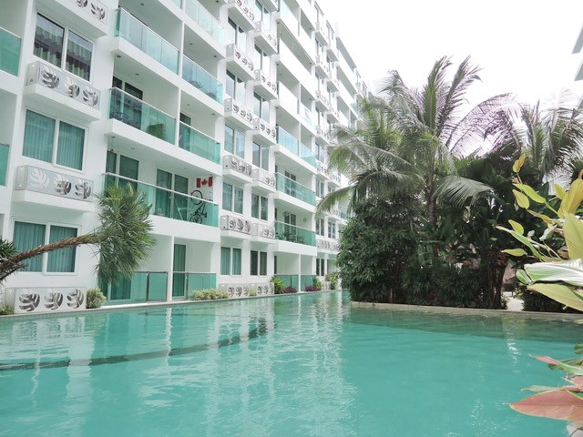 Condominium for rent in Jomtien AMAZON RESIDENCE showing the communal swimming pool